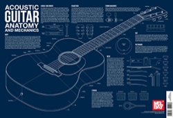 Acoustic Guitar Anatomy and Mechanics Wall Chart - Poster