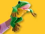 Freddie the Frog Hand Puppet