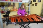 Musser M3PM 3 Octave Practice Marimba with bag