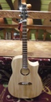 Riversong Traditional Canadian Performer Natural Acoustic Guitar