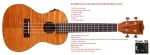 Kala KA-CEME Exotic Mahogany Series Concert Ukulele with EQ
