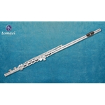 Tomasi Flute, Series 9, Silver Headjoint, Plated Body, Grenadilla wood lip plate, open holes, B foot